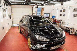 Peugeot 206 GT полировка + жидкое стекло